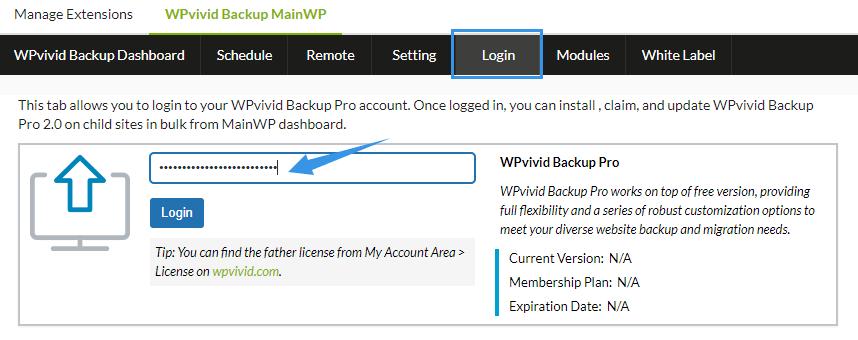 Login wpvivid pro on mainwp