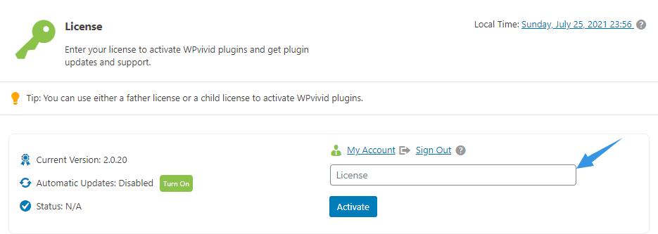 Activate WPvivid License