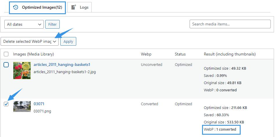 WPvivid Image Optimization Pro delete WebP
